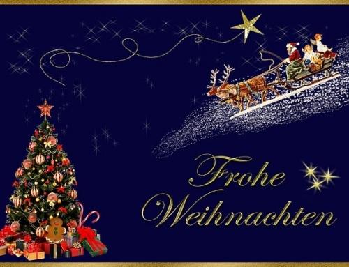 Wir sagen DANKE und wünschen frohe Festtage!
